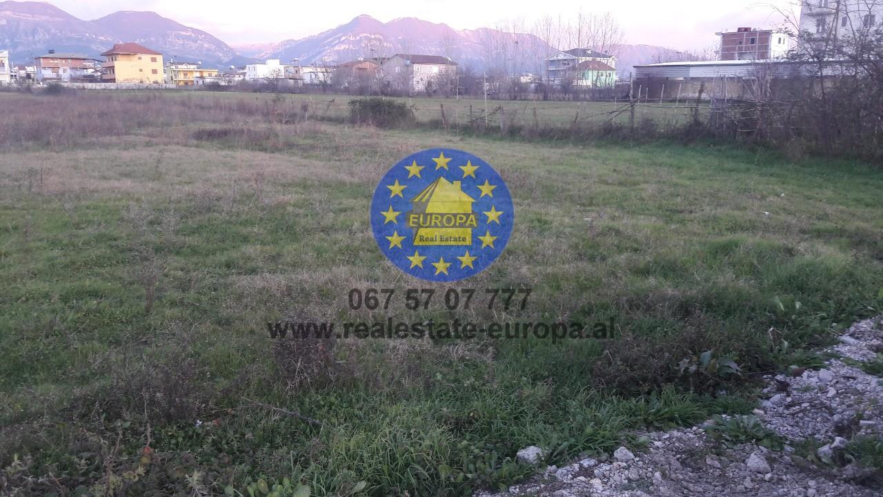 (Shqip) Shitet,Toke,ID 199240, Kamez, ne fillim te Valiasit. Cmimi 315.000 Euro